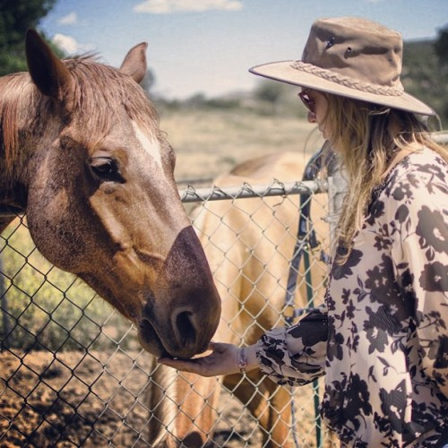 #horse #farm #stable #ranch #jamul #california