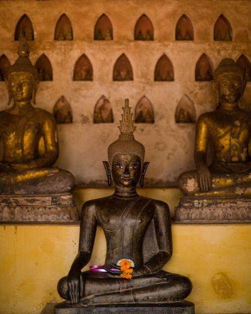 I've probably spent more time inside Wat Si Saket than...