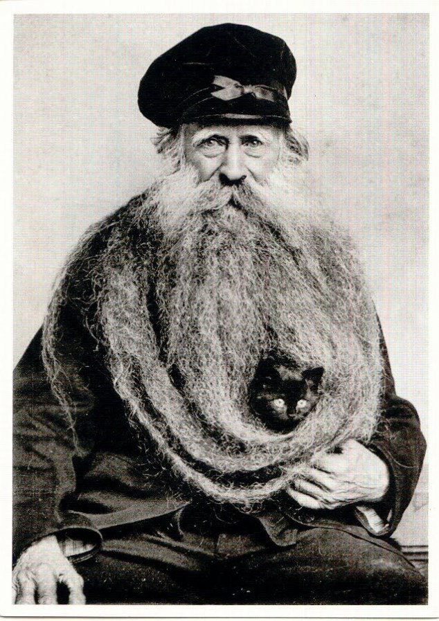 theoddmentemporium:  Louis Coulon's Cat Bed Beard