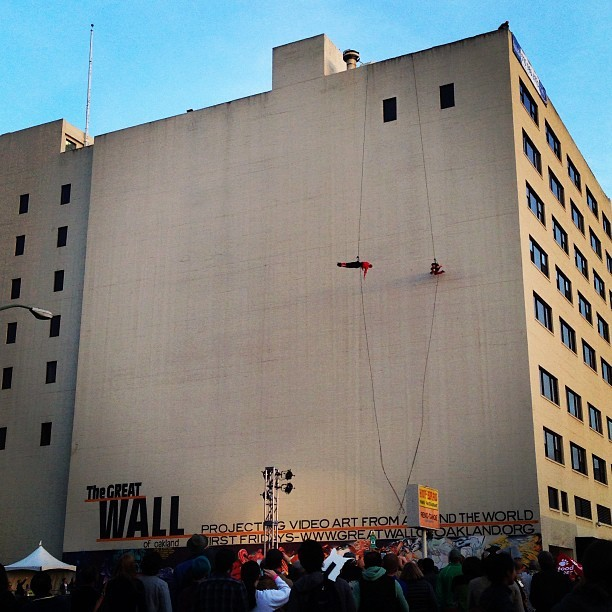 Catacrobats at the cat video festival on the Great Wall of Oakland. #oakland #cats #oakcatvidfest #spca #acrobats  (at Great Wall of Oakland)