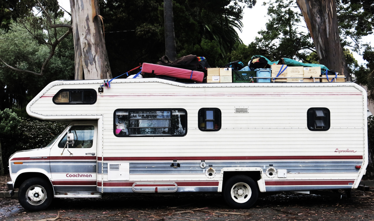 A Recreational Vehicle and Eucalypti