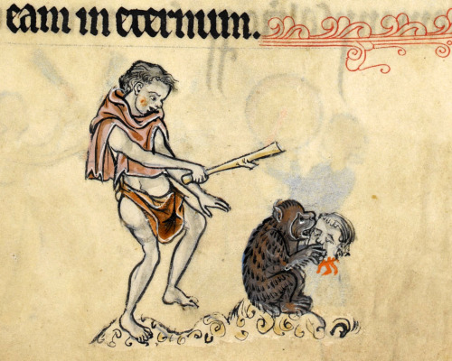 "discardingimages:  hey bear! stop eating that! 'The Rutland Psalter', England ca. 1260. British Library, Add 62925, fol. 51r  The text may read ""eam in eternum"", all I can read is ""om nom nom""."