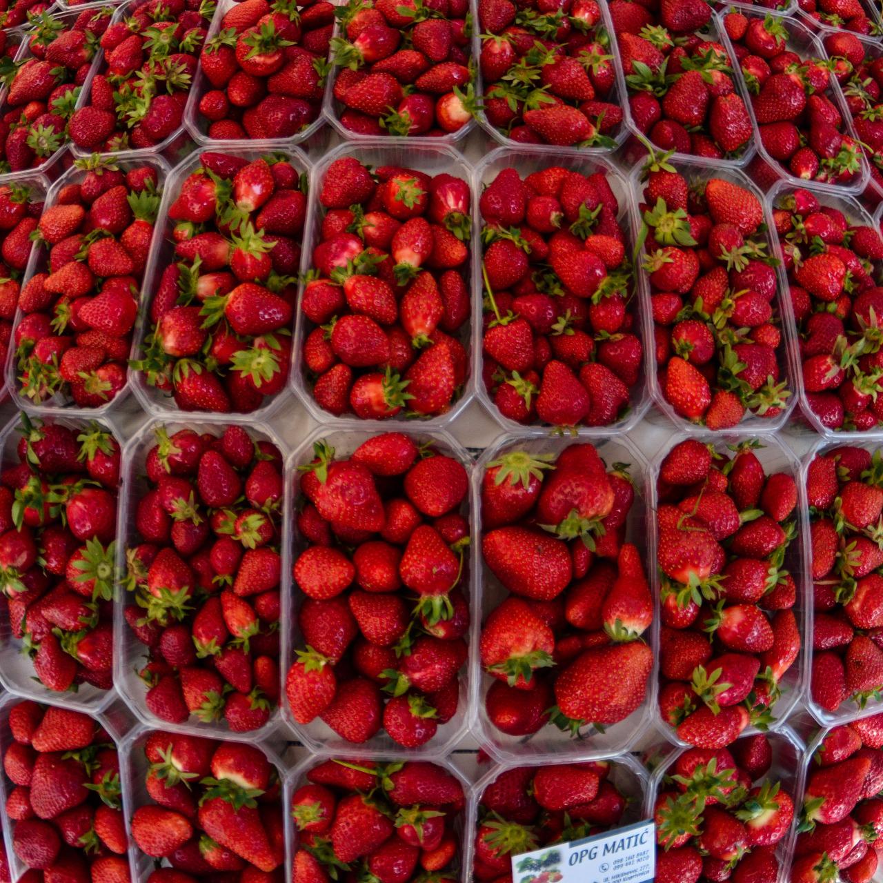 Ate at least 10 kg this Spring @ Planet Strawberry #strawberry#opg#matić#matic#zadar#hrvatska#croatia#spring#summer#berries#red#intense#food#fruit#sweet#healthy#foodporn#fisheye#nikon#opteka #6.5mm #summerincroatia