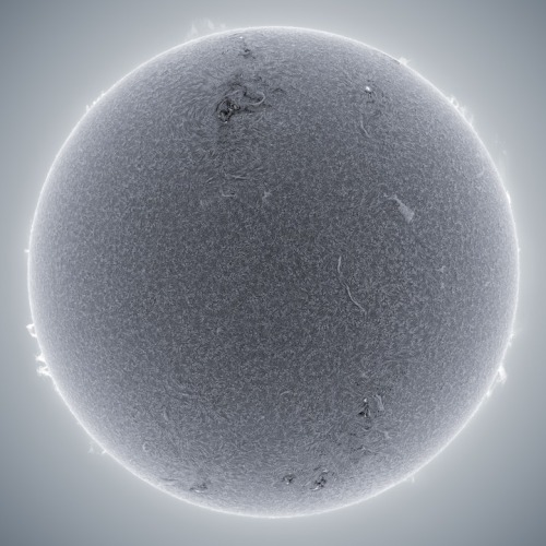 asaya:  The Sun:  Alan Friedman combines thousands of photos to re-create the Sun's surface via