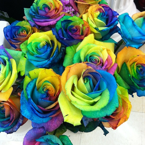 $10 each….. Wut. #flowers #rainbow #floral #valentinesday #rose #rainbowrose #instagram #work #ralphs #nofilter (at Ralphs)
