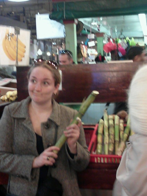 I made jessica pose with the sugar cane  And then we decided that Alexander would spend a billion years oogling it