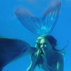 Mermaid With A Dolphin! Follow For Mermaids