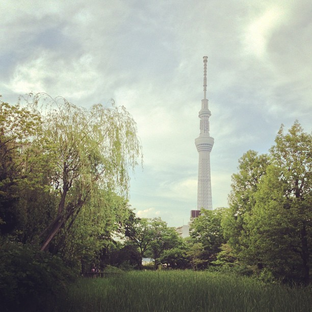instagram:   Tokyo Skytree Turns One See more photos of the Skytree by browsing the 東京スカイツリー (Tokyo Skytree) and 東京スカイツリー 天望デッキ location pages. One year ago today, the Tokyo Skytree (東京スカイツリ) officially opened to the public. Standing 634 meters (2,080 feet), the Skytree is the tallest tower and the second largest structure in the world. The Skytree took four years to build and in the last year alone over 6.3 million people visited the tower—many capturing the experience on Instagram.