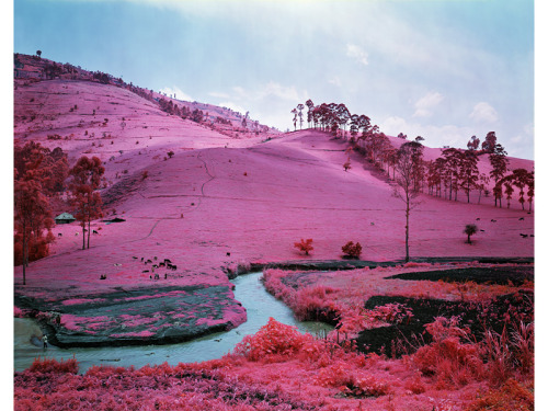 Men Of Good Fortune, North Kivu, Eastern Congo, 2011 by Richard Mosse
