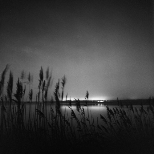 City light over the swamp Yashica Mat 124G / Kodak TriX 400