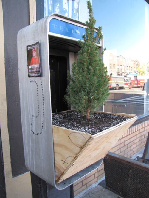 irecyclart:  repurposed phone box into tree planters At 1001 Gardens, the privacy of our visitors is of extreme importance to us (See this article to learn more about Privacy Policies.). This privacy policy document outlines the types of personal information is received and collected by 1001 Gardens and how it is used.Log FilesLike many other Web…
