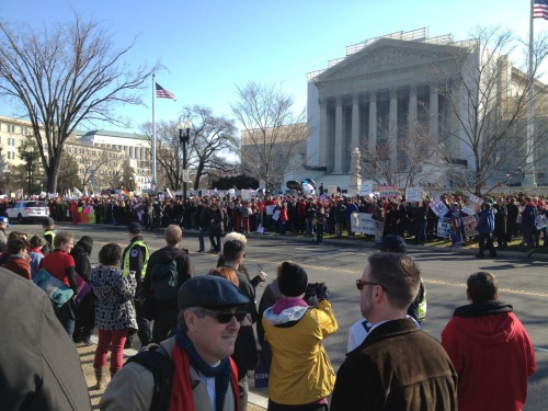 The view across the street from supreme court.