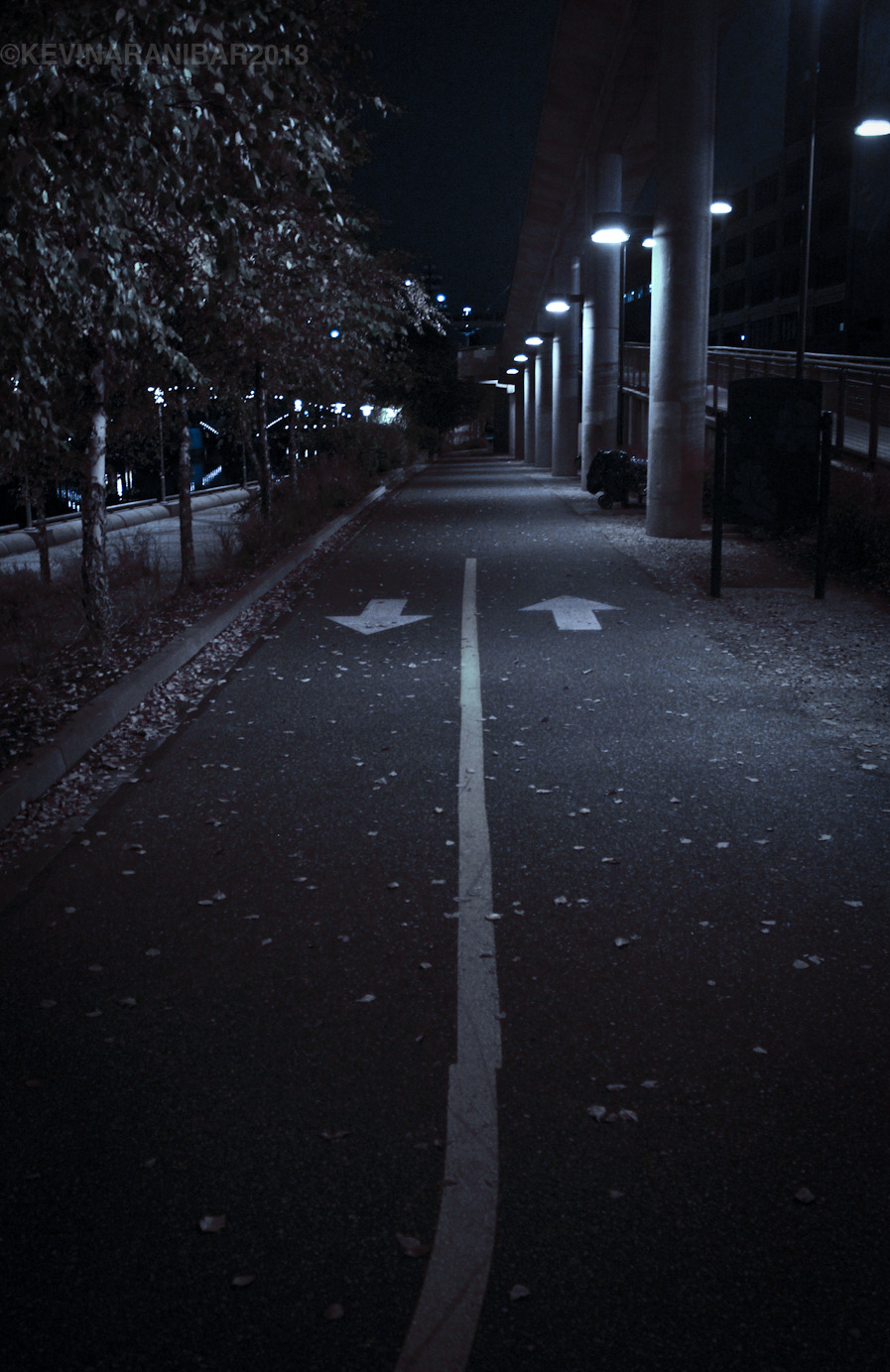 kevinaranibarphoto:  The Path. October 26th 2012