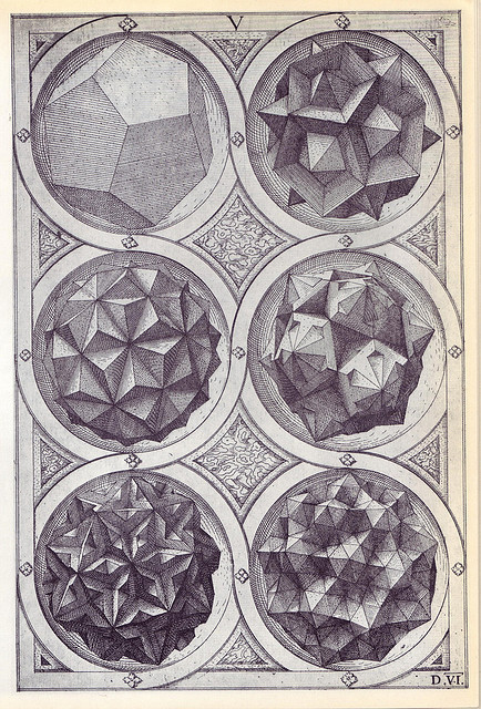 returntotree:  platonic solids
