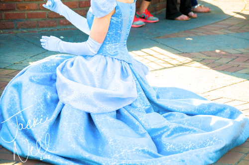 disneyloveandmemories:  I'm in love with Cinderella's new dress! The detailing on it is absolutely stunning!