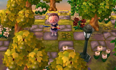 acnl qr code acnl path forest path stone path stepping stones acnl qr path animal crossing new leaf Rosewood mayor ellie forest town