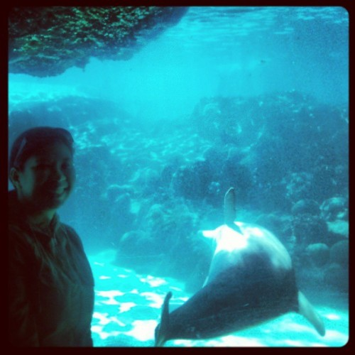 Seaworld 2010 #tbt #vacation #HudsonFilter #contrast #throwback