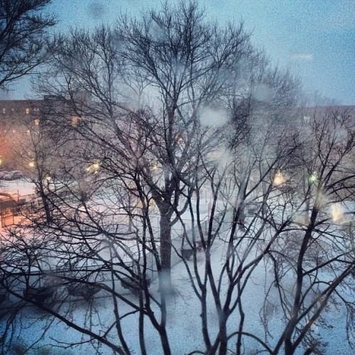 communikayleigh: Ok #nemo I've made it home… #bringit (at Electchester, NY)