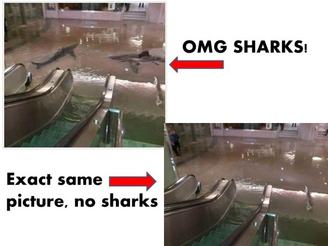 laughingsquid:  How to Tell if a Photo of a Shark Swimming in a Flooded City is Fake in Five Easy Steps