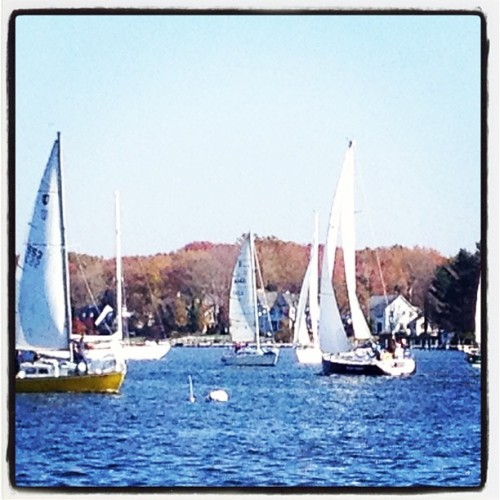 sailboats on the West River as seen from Thursdays