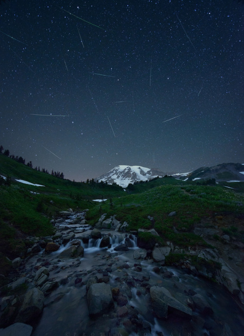 vurtual:  Meteor shower (by Protik Hossain) Perseid meteor shower captured @ Mount Rainier.