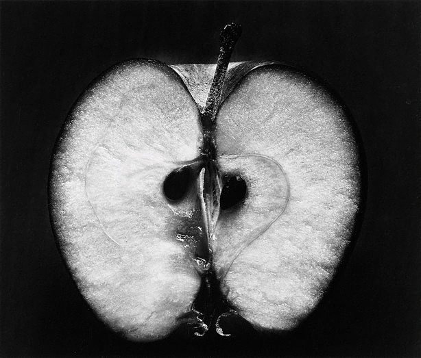 Half an apple, 1953Wynn Bullock