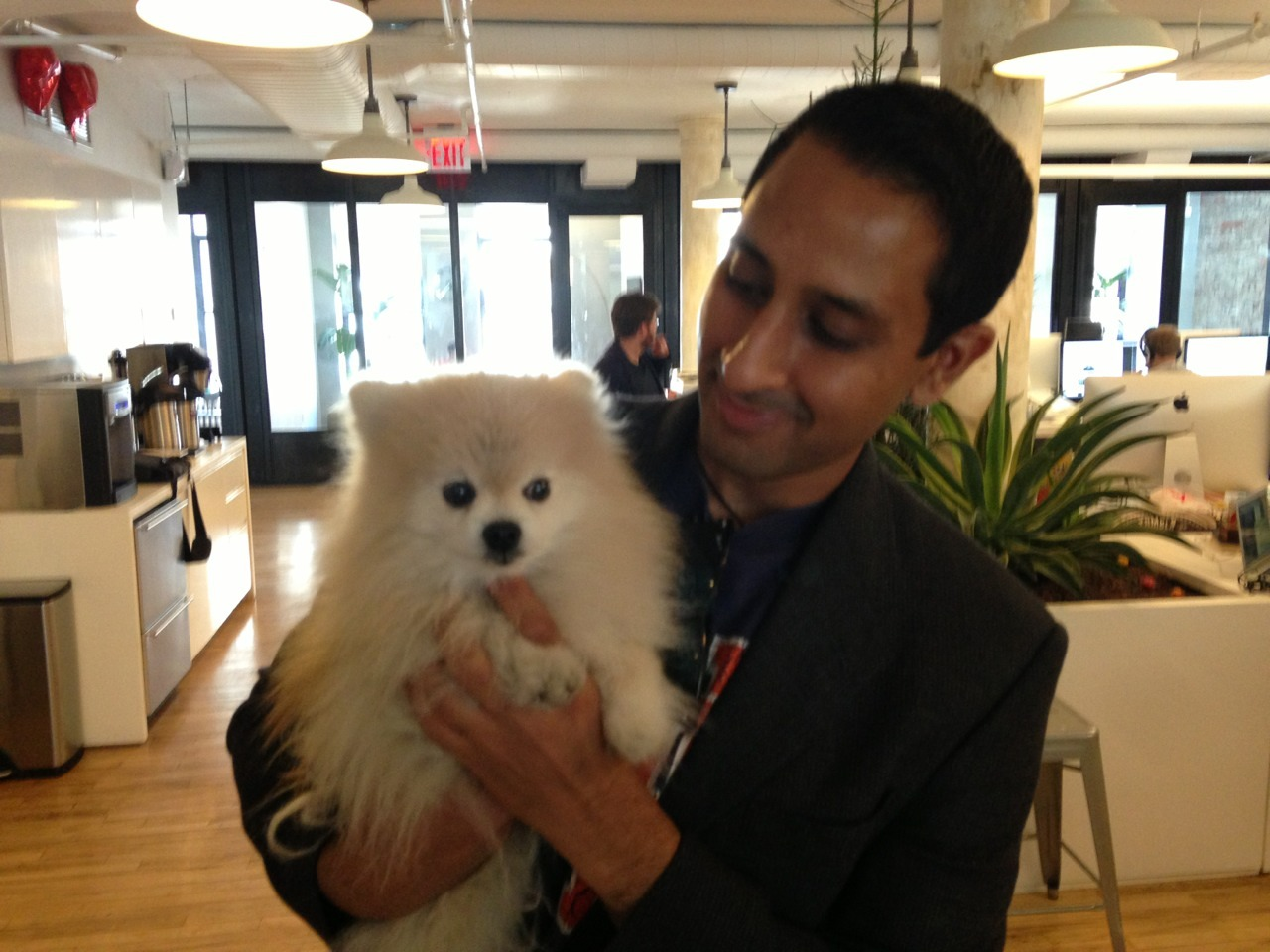 Today i met the creator of WeatherPuppy when he visited the Tumblr HQ! We discussed some exciting plans for the future and debated over the cutest pups in the app.