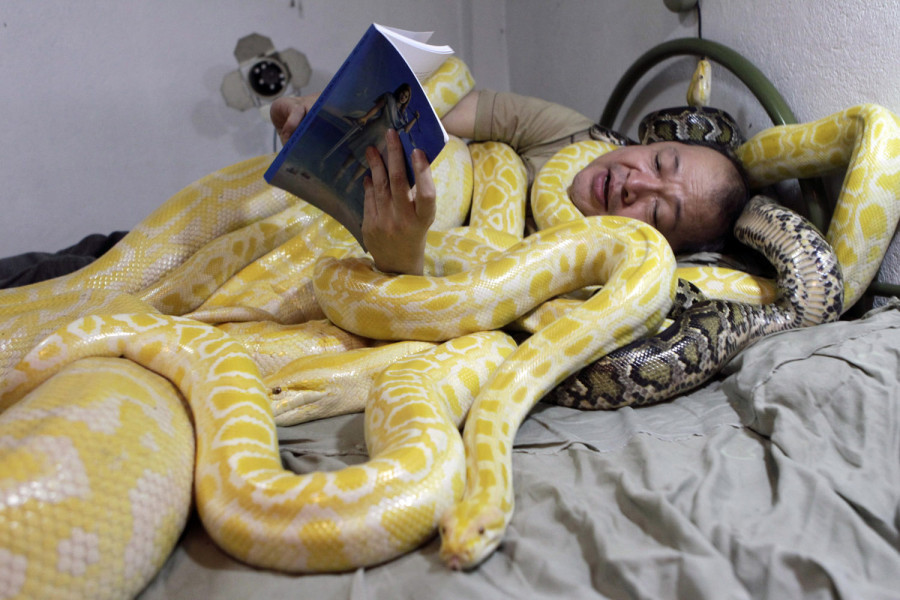 "Feb. 3, 2013. Zoo owner Emmanuel Tangco reads a book to his snakes in his bedroom in Malabon, Manila, Philippines.(Erik de Castro—Reuters)     From Chicago gun violence and the exhumed body of Richard III to the world's first ""bionic man"" and a bear walking a tightrope, TIME presents the best images of the week. See more of TIME's best pictures of the week on LightBox."