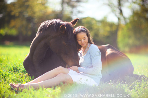 Horse Cuddles - Day 237/365 (by Sasha L'Estrange-Bell)