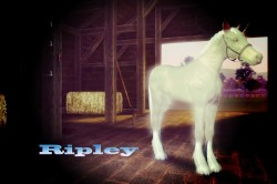 Download: Ripley & Cartridge [Unicorns] [wpfilebase tag=file id=15 tpl=download-button /]  [wpfilebase tag=file id=16 tpl=download-button…View Post