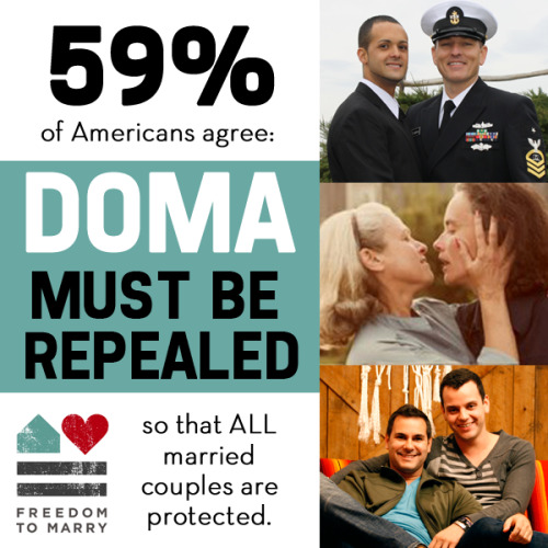 freedomtomarry:  A majority of Americans know that DOMA, which prohibits federal respect for marriages between same-sex couples, needs to be overturned. Reblog this image to support couples harmed by DOMA! http://bit.ly/VtUMLC