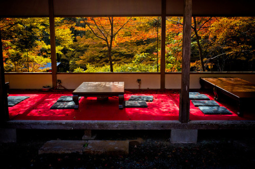 ileftmyheartintokyo:  momiji '12 - autumn leaves #4 (near Jingo-ji temple, Kyoto) by Marser on Flickr.