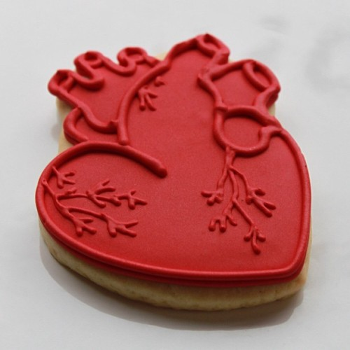 thisfuturemd:  Anatomical Heart Valentine's Day Cookies? Yes, please!  Yum. I second that sentiment. They even have the LAD! (ish)