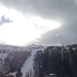 at The St. Regis Deer Valley