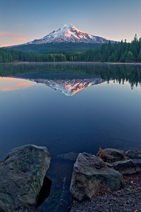 oecologia:  Mt Hood (Oregon) by Bobshots.