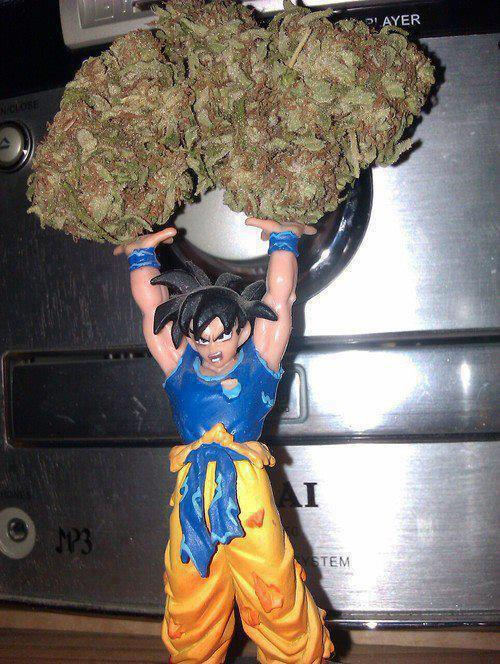 inebriantsteven:  Earth lend me your THC, spirit bud. See even goku smokes weed ya'll.