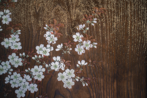 ottermind:  Kyoto: Ninnaji: cherry blossoms painted on a door