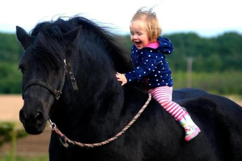 theeventingblog:  The happiness horses can bring to people if they let them could just change the world.