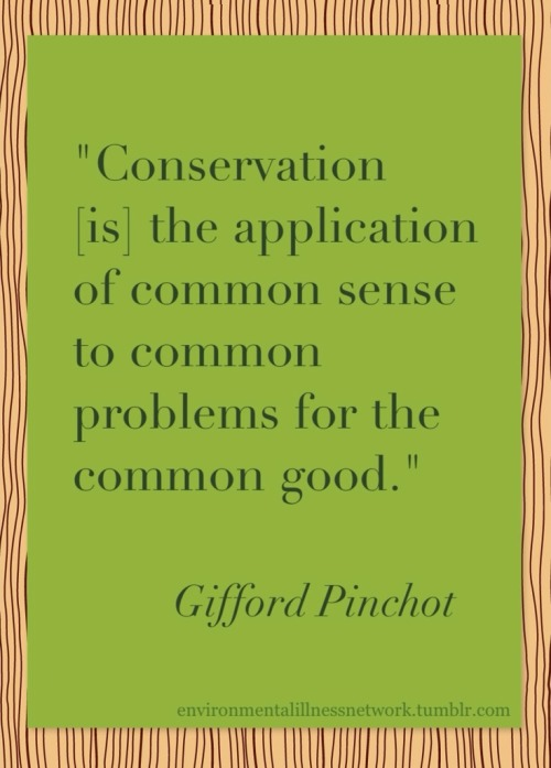 """Conservation [is] the application of common sense to common problems for the common good."" - Gifford Pinchot (Source: 1909 speech at the Conservation Congress in Seattle) The above image has a creative commons license for easy sharing (noncommercial, attribution required, no derivative works)."