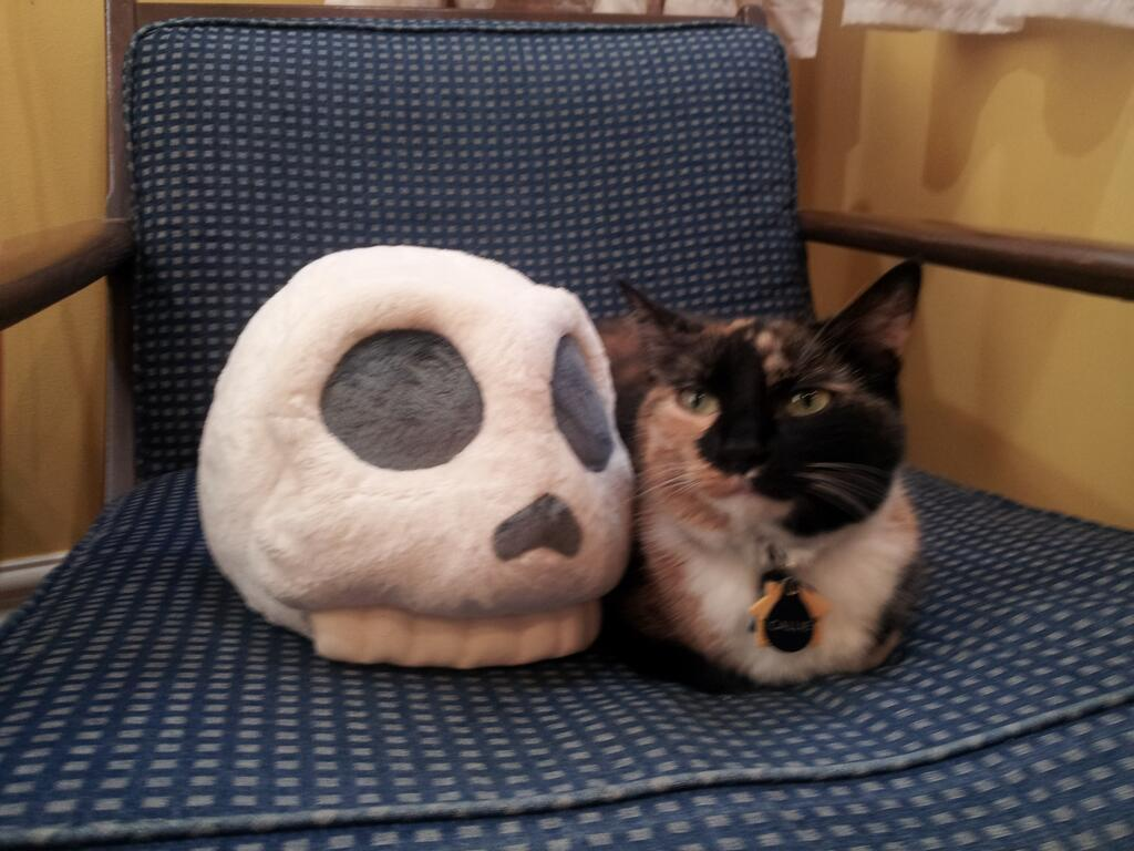 We just want to cuddle with these stuffed Yorick skulls from Ryan North's project, To Be or Not To Be. The cat's okay, we guess. (photo credit: TacoHugsPHD)