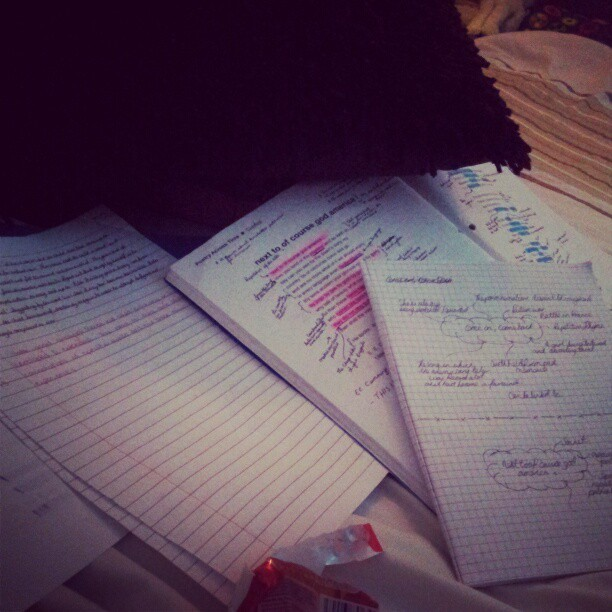 All Afternoon I Have Been Revising Bloody English! #Revision #Books #English #School #Work #Poems #Bed #Boring #Exam #Prepared