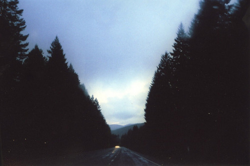 almostlikeadream:  untitled by emma louise. on Flickr.