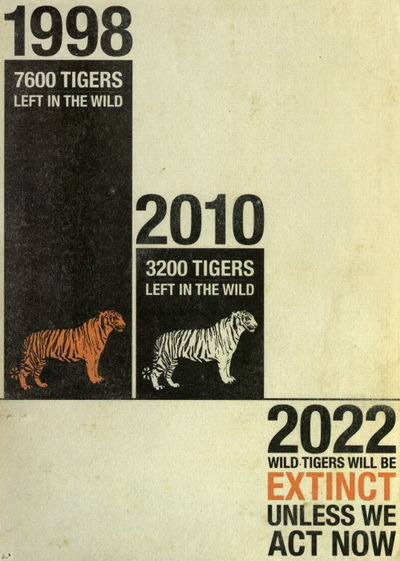 thesimpleactofveganism:  conserveourworld:  Save the tigers before it's too late  Everyone REBLOG this and help raise awareness!