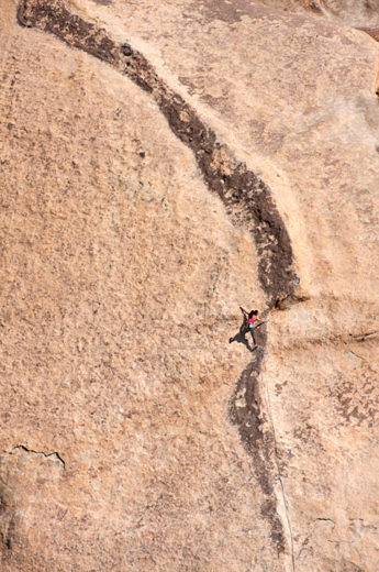 Black Tide - Joshua Tree National Park 4 Bolts. 115ft.  Photo by: Tom Slater Climber: Natalie Duran