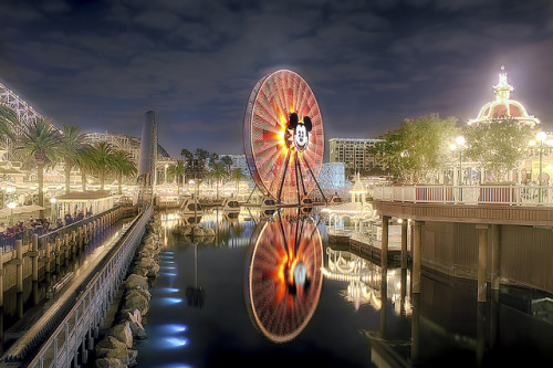 fuckyeahdisneyphotography:  Paradise Pier Side View by cstout21 on Flickr.
