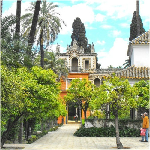 #Sevilla #Alcazar #latergram #all_shots #Spain #orange #trees #man #palmtrees #buildings #architecture #linandara_built #linandara_spain #sky #clouds #spring #filming #Испания