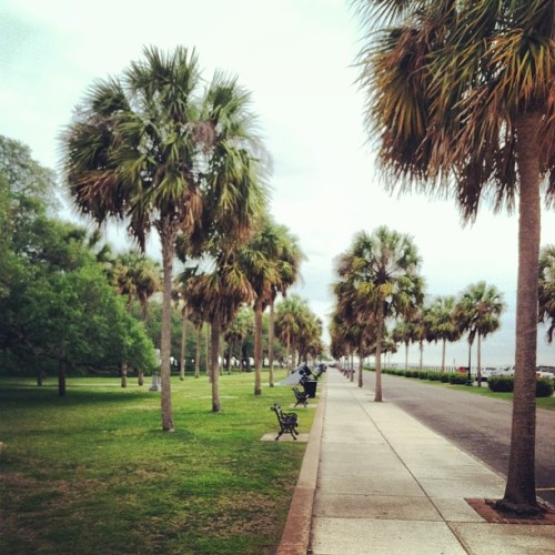 etiwanparkart:  Heading east to The Battery, officially White Point Garden. This southernmost point of Charleston is named after the heap of whitening oyster shells that was here back when the city was founded. The park was planned to be much larger but the city had to sell off chunks of the land to finance public institutions during the Civil War. The raised promenade around this grand space is known as High Battery. (at White Point Gardens)