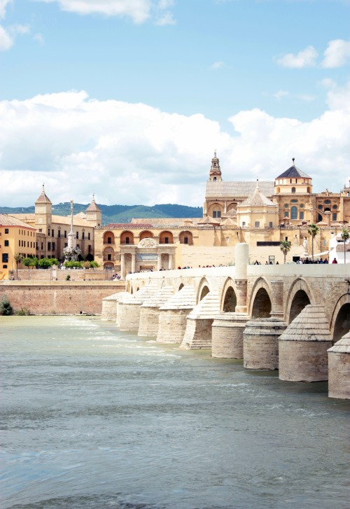 travelingcolors:  Roman Bridge, Córdoba | Spain (by Nacho Coca)