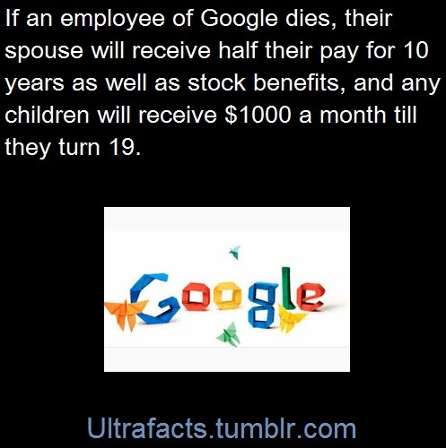 ultrafacts:Entire Compilation of Ultrafacts' Google facts.Sources: 1 2 3 4/4/4/4/4/4 5 6 7 8 9 10Follow Ultrafacts for more facts