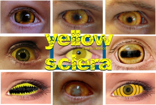 yellow sclera lens by hsama featuring yellow sunglasses